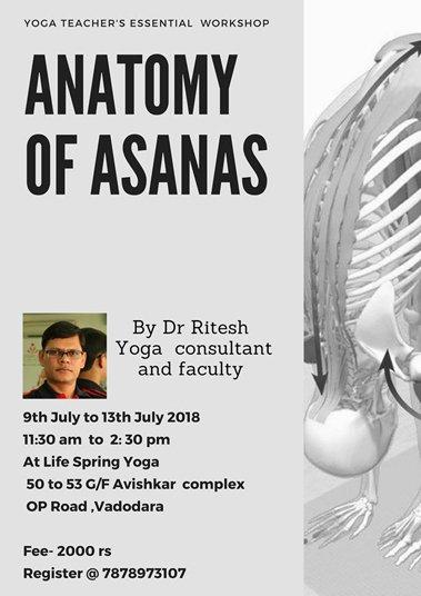 Yoga Anatomy trainer